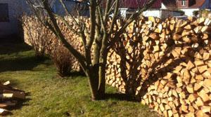 Holz-Saison 2015